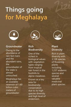 Meghalaya is blessed with it's beauty as well as abundance of natural products.
