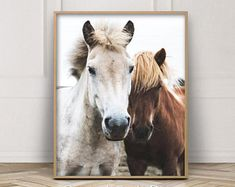 Horse Print, White and Brown Horses, Teen Girls