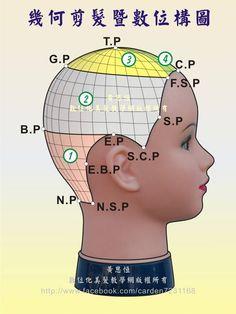 黃思恒幾何剪髮數位構圖--髮片劃分系列,在縱髮片、橫髮片的交錯下,可看出各個設計區塊更微小的設計髮片及數位構圖,這就是構圖對系統化學習的優勢-右側呈現