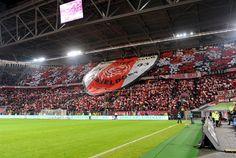 Fortuna Düsseldorf 1895: #F95 #fussball #scd2003