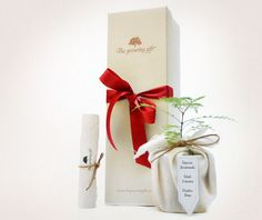The Growing Gift - Regalos que crecen