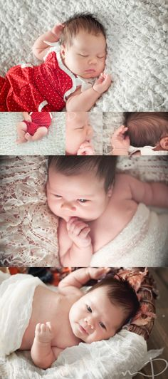 One Month Session - Asheville Baby Photographer | Asheville Maternity & Newborn Photographer - Molly Dockery Photography Blog, Baby Girl