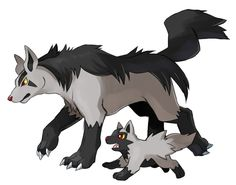 Poochyena - Mightyena #261 - #262 evolution