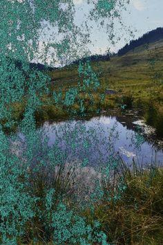 Nature beauty by artifyworld.deviantart.com on @deviantART