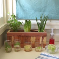 5 Ways To Save Money In The Kitchen #gardening #cleanig #DIY #kitchen
