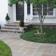 Bluestone Walkway Design Ideas, Pictures, Remodel, and Decor - page 7