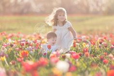 Whimsical Baby Photographer   Flower Field   Tulip Field Photo Shoot   Baby Photographer   Baby Photography   Styled Shoot