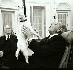 Lyndon Johnson with his dog in the Oval Office