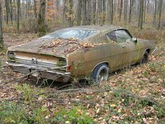 A beautiful abandoned car found in a Forest