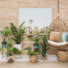 Our favourite interior design trends for Space Interiors, Gold Coast, Interiores Design, Interior Styling, Design Trends, Christmas Gifts, Things To Come, Baskets, Blog