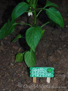 cute garden markers