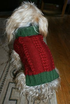 Free Pattern: Spike's Christmas Sweater by Margaret Castellanos