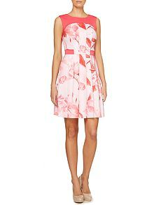 Fit and flare dress with printed panel