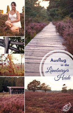 Ausflug in die Lüneburger Heide - All the wonderful things Heide Park, Wonderful Things, Railroad Tracks, Life Is Good, Travel, Inspiration, Outdoor, Natural Wonders, Vacation Places