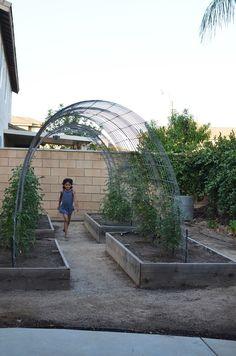 Garden Arbor, Garden Trellis, Garden Boxes, Garden Landscaping, Easy Garden, Pea Trellis, Wisteria Arbor, Raised Garden Beds, Raised Beds
