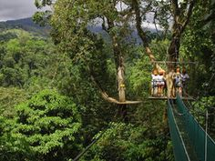 Canopy Safari- from Costa Rica Experts romantic honeymoon vacation packages
