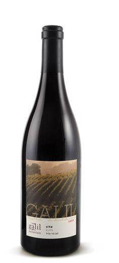Galil Alon Red Wine