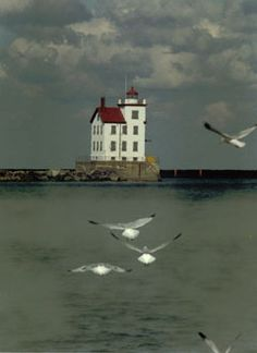 Lorain, OH lighthouse Beacon Of Light, Light In The Dark, Lorain Ohio, Famous Lighthouses, Lighthouse Photos, Lake Erie, Light House, Sea And Ocean, Le Moulin