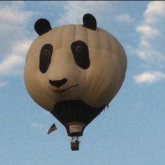 Panda hot air ballon