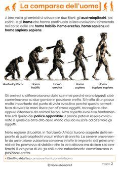 Esercizi sulla comparsa dell'uomo 2 Homo Sapiens Sapiens, Homo Habilis, History For Kids, Elementary Schools, Middle School, Education, Books, Nina Dobrev, Gaia