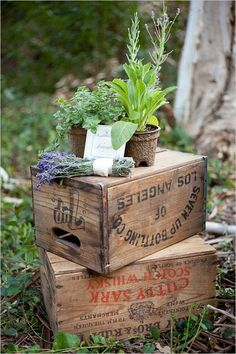 rustic country wood crates wedding decor / http://www.himisspuff.com/potted-plants-wedding-decor-ideas/8/