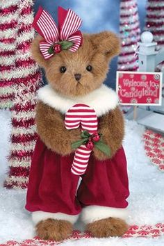 And visions of candy canes dancing in her head. Plush Pepper Minty bear from Bearington Bears is all ready to taste the candy cane she holds. Christmas Teddy Bear, Christmas Toys, Teady Bear, Love Bear, Big Bear, Boyds Bears, Bear Wallpaper, Cute Teddy Bears, Bear Doll