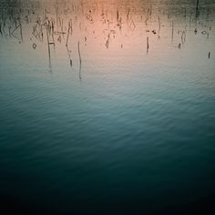 Moody photography by Tomoyuki Shinohara | iGNANT.de