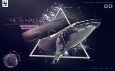 The whale by geng wei, via Behance
