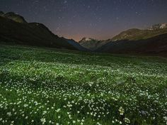 Summer night falls over an alpine meadow stippled with wildflowers in Italy's Gran Paradiso National Park. In a busy country on a crowded continent, Gran Paradiso's unspoiled landscape is an arcadian oasis.