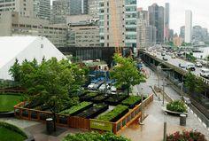 An urban farm in Manhattan.