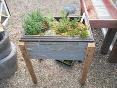 planter box - could use an old drawer