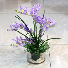 hot  5 Pcs Freesias Bulbs(not Freesias seeds) balcony decoration seed of perennial flower for home garden indoor plants flowers