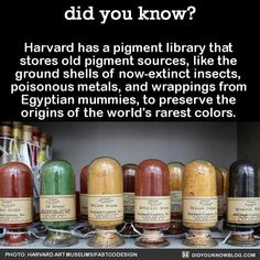 Did you know? Harvard has a pigment library that stores old pigment sources, like the ground shells of now-extinct insects, poisonous metals, and wrappings from Egyptian mummies, to preserve the origins of the world's rarest colors. Interesting Information, Interesting Facts, Amazing Facts, Interesting History, Interesting Stories, Amazing Things, Origin Of The World, Wtf Fun Facts, Random Facts