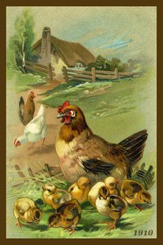Olde America Antiques | Quilt Blocks | National Parks | Bozeman Montana : Chickens - Hen and Chicks 5b