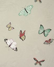 Farfalla 03 från Nina Campbell