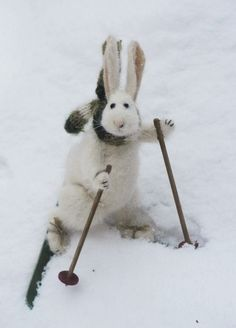 On his way to Spring Time #easter #bunny