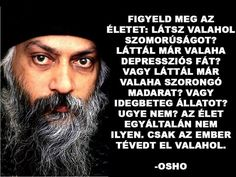 Figyeld meg az életet… Osho, Buddhism, Sarcasm, Einstein, Thoughts, Words, Quotes, Life, Zen