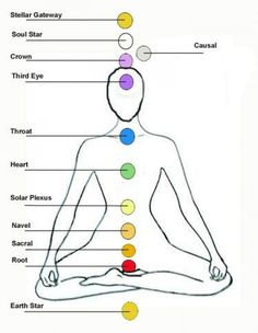 the 12 chakra system