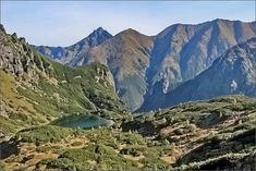 Flora, Mountains, Water, Travel, Outdoor, Gripe Water, Outdoors, Viajes, Plants