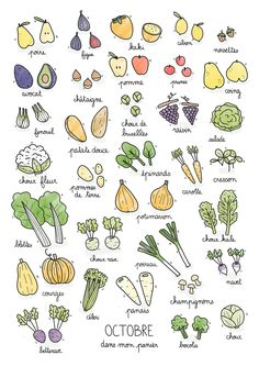 Fruits & Vegetables calendar on Behance Doodle Drawings, Easy Drawings, Sketch Note, Food Doodles, Bujo Doodles, Batch Cooking, Daily Pictures, Bullet Journal Inspiration, Food Illustrations