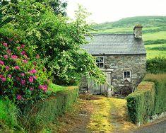 My dream spring break would be in Ireland in a cute little cottage!!!
