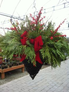 Fresh festive evergreen hanging basket! perfect for where the summer baskets were hanging.