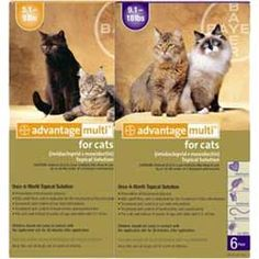 Advantage MULTI for Cats -- Free Shipping over 75.00.