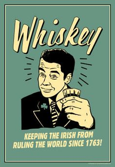 Whiskey Keeping Irish From Running World Since 1763 Funny Retro Indoor/Outdoor Plastic Sign