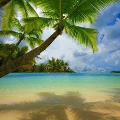 Aloha Life♥ #hawaii #maui #islandgirl #hawaiilife #palmtrees #sunshine #ocean #beach #clearwaters #swim #travel #adventurehawaii