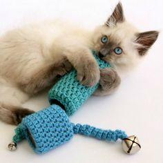 Un jouet pour chat DIY Gato Crochet, Crochet Cat Toys, Crochet Animals, Crochet Crafts, Crochet Projects, Free Crochet, Ravelry Crochet, Crochet Birds, Beginner Crochet