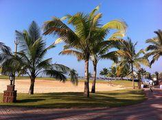 64 best goa images vacation places conference hotel goa india rh pinterest com