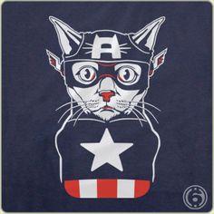 Captain Ameri-Cat Detail