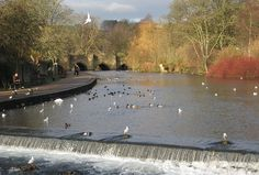 Bakewell Derbyshire- a beautiful part of England Amazing Places, Beautiful Places, Bakewell Derbyshire, Denby Pottery, Travel 2017, Chatsworth House, Peak District, Number 3, Days Out