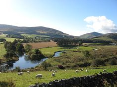 Countryside round Biggar, Lanarksire.